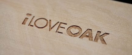 I Love Oak Logo Design